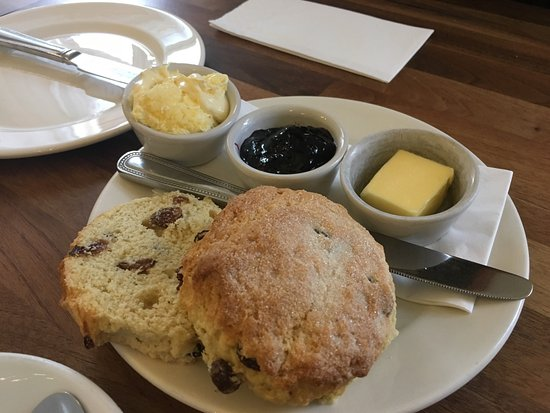 Harlequin Coffee and Tea House: Cappuccino and tea with harlequin scone