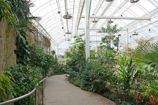 Rhs Garden Wisley Glhouse