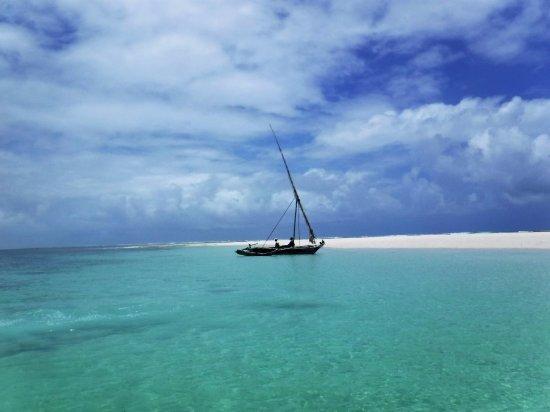 Kenyaways Beach Bed & Breakfast: Snorkling off Diani (10 minute boat ride from Kenyaways)