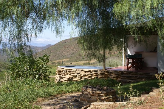 Robertson, South Africa: Peppertree plunge pool and stoep