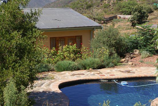 Robertson, Южная Африка: Quince cottage pool