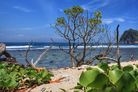 Tulungagung, Ινδονησία: Pantai Ngalur