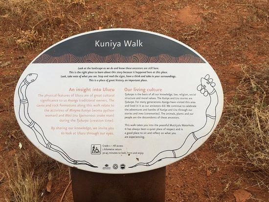 写真SEIT Outback Australia枚