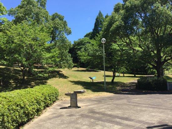 Shibayama-machi Photo