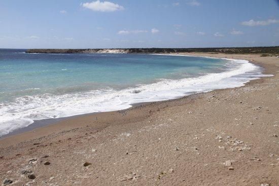 Район Пафос, Кипр: Lara Beach