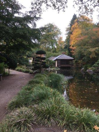 Japanischer Garten (Japanese Garden): photo3.jpg