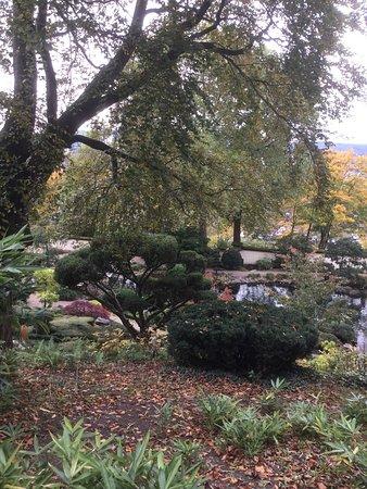 Japanischer Garten (Japanese Garden): photo4.jpg