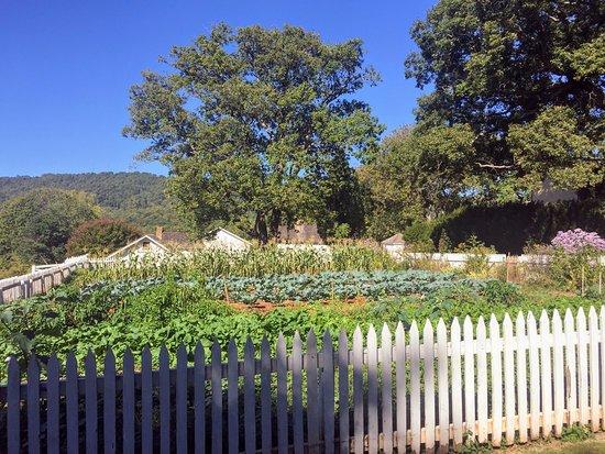 James Monroe's Highland: Highland garden with mountain view