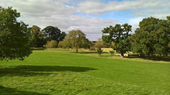 Charlecote Park Photo