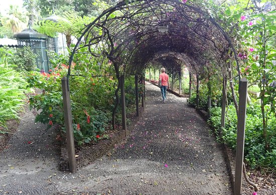 Madeira Botanical Garden : Interesting archway.
