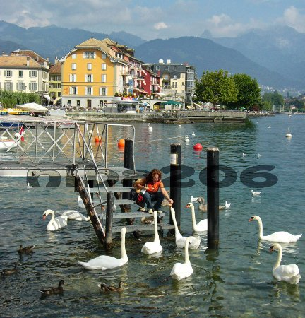 Corseaux, Szwajcaria: Vevey #5