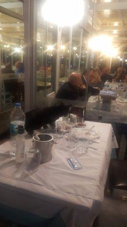 Cunda Deniz Restaurant : kediler