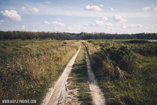 Fort Wayne, IN: Main trail