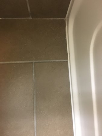 Richfield, MN: dirt along wall in bathroom and hair from previous tenant