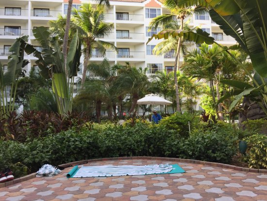 Marriott's Aruba Surf Club: View for stretch yoga class at the Ocean Club
