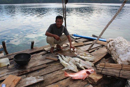 Sulawesi Tengah, Indonesia: Perburuan Ikan Hiu masih terjadi di Pulau Khayangan Sombori