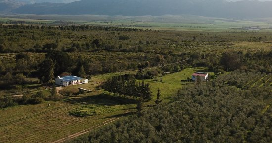 Tulbagh, South Africa: Overview of Olive Cottage