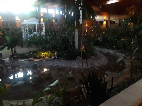 Принс-Джордж, Канада: Little stream wanders through lobby