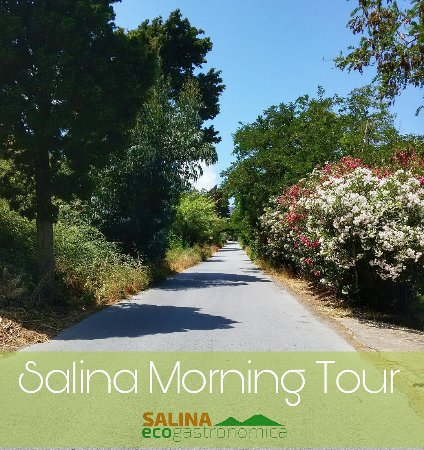 Santa Marina Salina, Itália: Le vie dei profumi dell'isola verde delle Eolie!