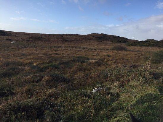 Moycullen, Ireland: Countryside Trek