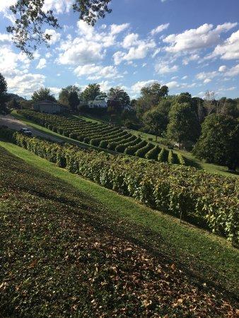 Stone Hill Winery: photo0.jpg