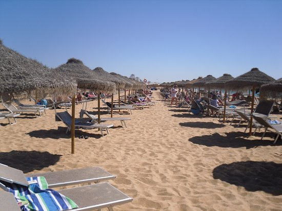 Algardia Apartments : Beach