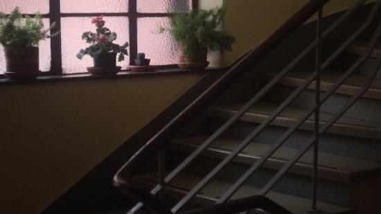 Hotel Aragon: Zona de escaleras