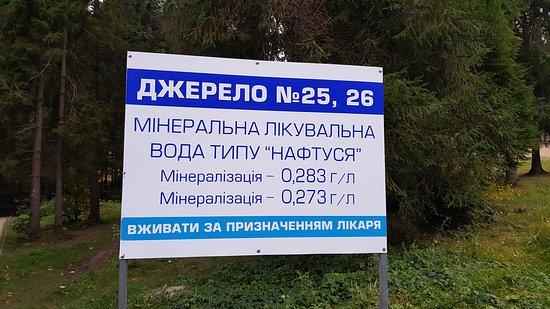 Skhodnitsa, Ucrania: 20171011_183233_large.jpg