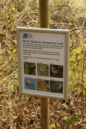 Westleton, UK: Signage