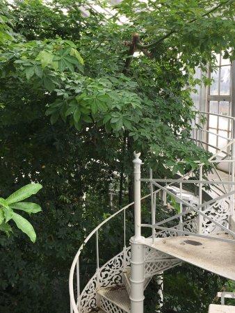 Botanical Gardens (Botanisk Have): photo1.jpg