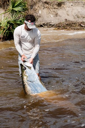 Jensen Beach, FL: Jonathan holding Tarpon out of water