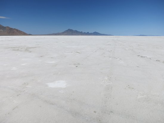 salt flat single personals This feature is not available right now please try again later.