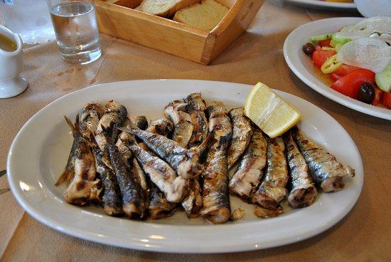 Anemoessa: Сардины