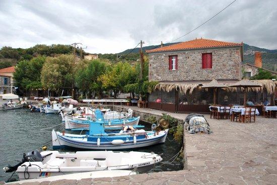 Anemoessa: Красивый ресторан