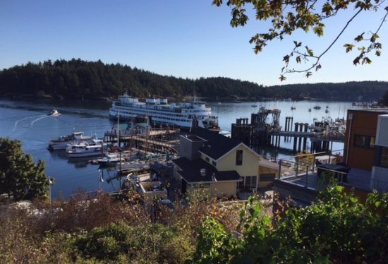 walk out view from hotel picture of friday harbor house. Black Bedroom Furniture Sets. Home Design Ideas