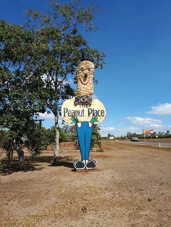 Tolga, Australien: The Biggest Peanut Ever