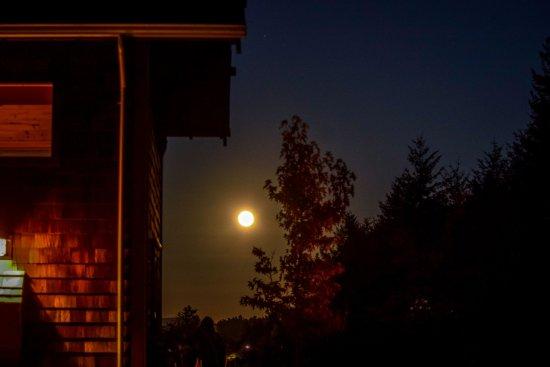Juniper Lane Guest House: Harvest moon from Juniper Lane Guesthouse