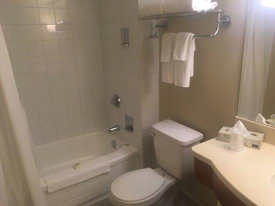 Chelsea Hotel Toronto: photo1.jpg