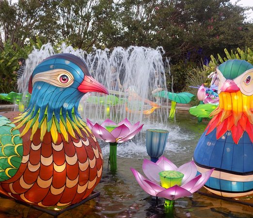 Foto De Daniel Stowe Botanical Garden Belmont Chinese Lantern Festival Tripadvisor