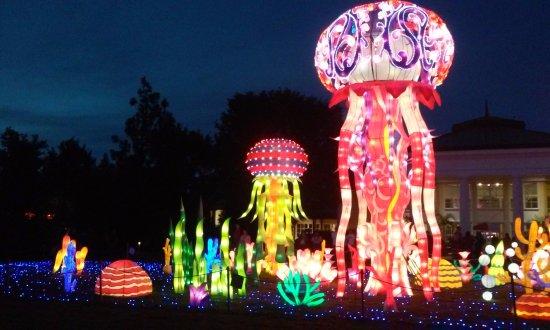 Chinese Lantern Festival Picture Of Daniel Stowe Botanical Garden Belmont Tripadvisor