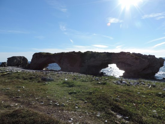 Portland Creek, Canada : Natural rock archway created by tidal action, Arches Provincial Park