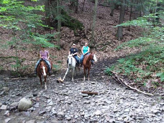Lodi, Νέα Υόρκη: Walking in the creek