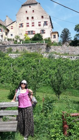 Appiano sulla Strada del Vino, İtalya: ,,Castello,,