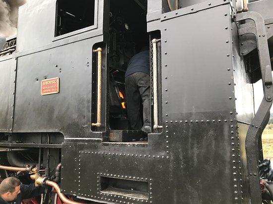 Treno della Sila Foto