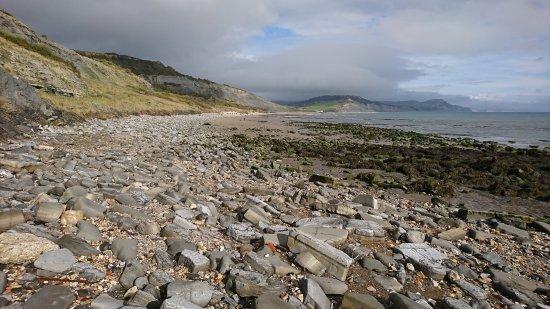 Foto de Lyme Regis