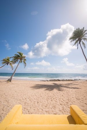 Beach - Picture of Baoba Beach, Dominican Republic - Tripadvisor