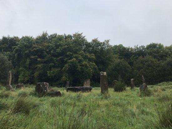 Kinnitty, أيرلندا: Druid Circle
