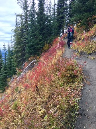 Mountain Trek Fitness Retreat & Health Spa: View from hiking trails