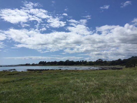 Opotiki, New Zealand: photo7.jpg