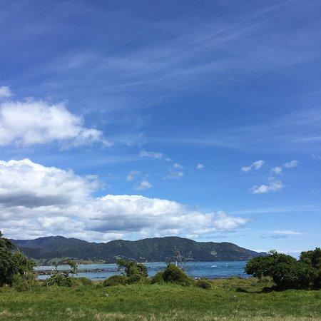 Opotiki, New Zealand: photo8.jpg